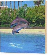Dolphins Dance Wood Print