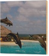Dolphins Fly Wood Print
