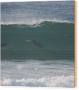Dolphins Surfing The Waves Wood Print