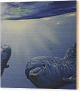 Dolphins Underwater Game Wood Print