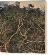 Dolwyddelan Castle Wood Print
