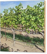 Domaine Chandon Panorama Wood Print