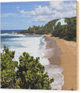 Domes Beach Rincon Puerto Rico Wood Print by George Oze