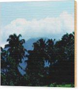 Dominica Wood Print