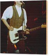 Don Henley 90-3244 Wood Print