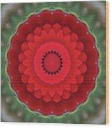 Don Juan Kaleidoscope Carnation Wood Print