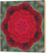 Don Juan Rose Poppies Kaleidoscope Wood Print
