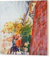 Don Quixote In San Juan Wood Print by Estela Robles