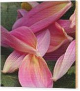 Done Blooming Wood Print by Steve Augustin
