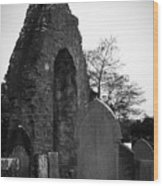 Donegal Abbey Ruins Donegal Ireland Wood Print