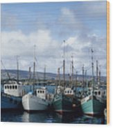 Donegal Fishing Port Wood Print
