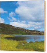 Donegal Landscape Wood Print