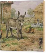 Donkey And Farmyard Fowl  Wood Print