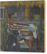 Donkey  At Taco Stand Wood Print