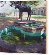 Donkey Fountain Wood Print