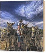 Donkey Rides Wood Print