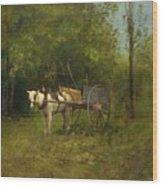 Donkey With Cart Wood Print