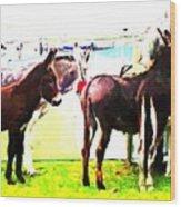 Donkeys At Mullaghmore Wood Print
