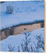 Donnelly Creek In Winter Wood Print
