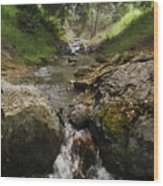 Donner Creek Wood Print