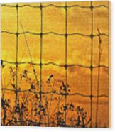 Don't Fence Me In  Wood Print
