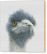 Dont Mess With Emu Wood Print
