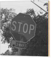 Don't Stop Believing  Wood Print