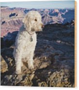 Doodle On Grand Canyon Rim Wood Print