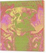 Doom 3 Resurrection Of Evil Wood Print