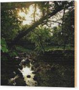 Doonally Co. Sligo Ireland. Wood Print