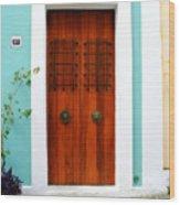 Door 51 Wood Print