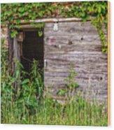 Door Ajar Wood Print