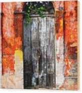 Door At The Red Corner By Darian Day Wood Print