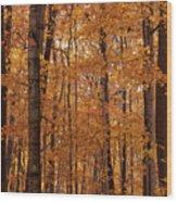 Door County No. 2 Wood Print