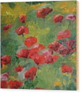 Door County Poppies Wood Print