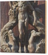 Door Knocker In Venice Wood Print