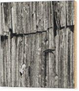 Door Latch And Hinges 3 Wood Print