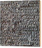 Door Of La Sagrada Familia Wood Print
