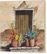 Door With Flower Pots Wood Print