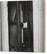 Doorway In Cuervo Wood Print