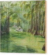 Dora Passage Wood Print