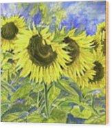 Dordogne Sunflowers Wood Print