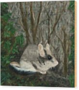 Dormouse In Ivy Wood Print