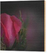 Dorothy's Rose Wood Print