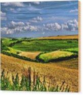 Dorset Farmland Wood Print