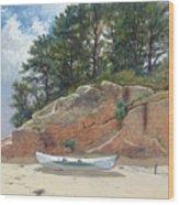 Dory On Dana's Beach Wood Print