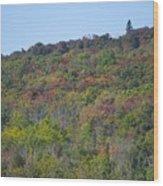 Dots Of Fall Colors Wood Print