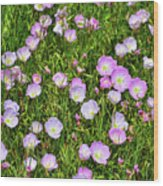 Dotted Meadow Wood Print