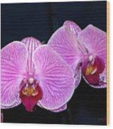 Double Bloom Wood Print