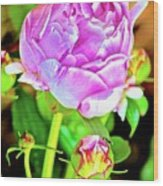 Double Blooms Wood Print
